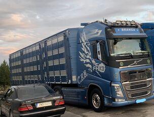 VOLVO TOP FH13 540-EURO 6 -4 level Jumbo PLAVAC   camión para transporte de ganado